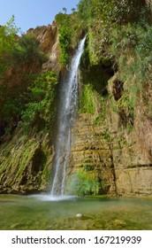 David's Waterfall. En Gedi Nature Reserve, Israel