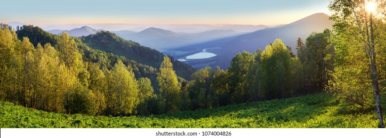 Dawn in the Altai Mountains, summer landscape, green slopes and forest, view from the mountain