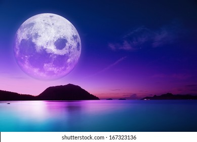 the dawn coast of moonlight