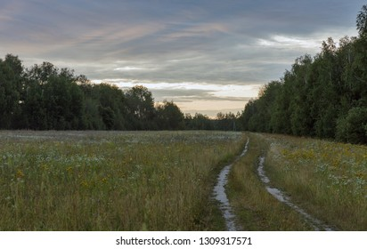 dawn landscape with rural road in the field, Ukraine