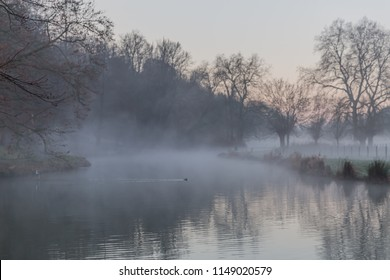 Dawn with mist in a forest with a lake surrounded by trees with reflections in water in Elsloo south Limburg, the Netherland Holland