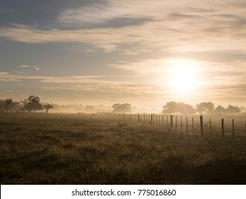 Dawn on the ranch, farm, caribbean