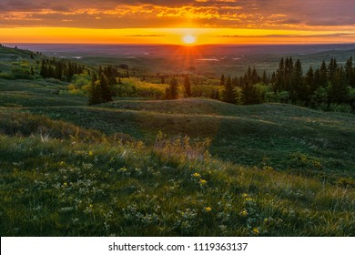Dawn over Cypress Hills, Canada