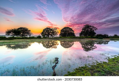 Dawn over the lake landscape. Sunrise over trees. Beautiful sunrise landscape. Nature at dawn