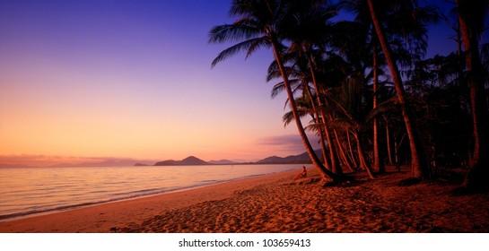 Dawn, Palm Cove