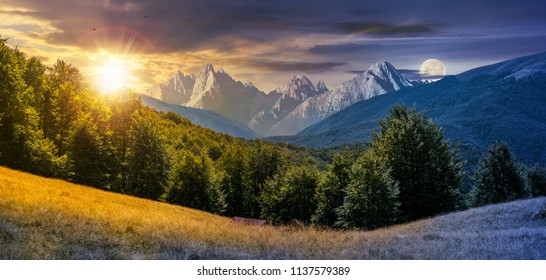 day and night composite of mountainous landscape. time change concept. perfect countryside scenery with beech forest on a grassy hillside and High Tatra mountain ridge in the distance