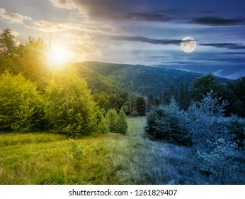 day and night time change concept. forested area in mountains with sun and moon. calm nature with green grassy meadow and cloudy sky