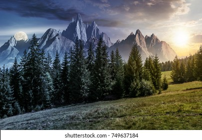 day and night time change concept. spruce forest on grassy hillside in mountains with rocky peaks. gorgeous composite image of summer landscape with sun and moon.