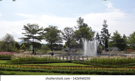 a day in the park with lovely water fountain and colorfull flowers, photo taken at Nusantara flowers garden in cisarua ,west java, indonesia , 16 june 2019