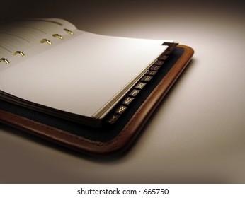 Day Planner/Address Book