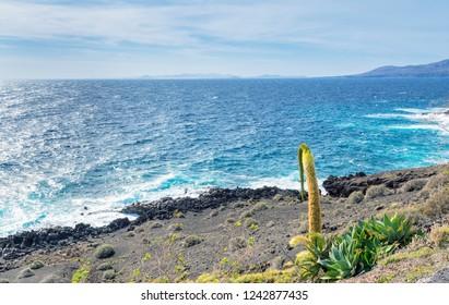 day view of coastline and Atlantic ocean in Puerto del Carmen, Lanzarote, Spain