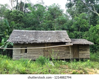 Dayak traditional house in the middle of Central Borneo forest
