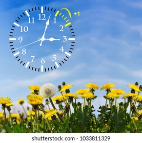 4 pics 1 word clock watch timer dandelion