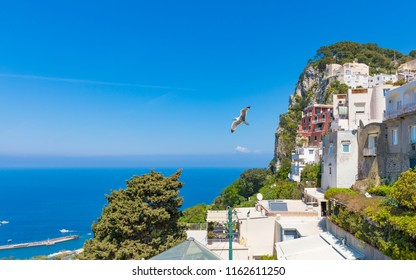Daylight view of district La Piazzetta in rocky Capri Island, Italy