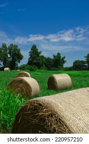 A daytime landscape photograph of bails of rolled hay scattered about in a field.