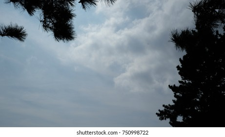 daytime sky and cloud background