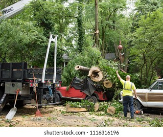 Dayton, Ohio, USA - June 19, 2018: Workers work to remove debris of 50-foot-tree that crushed a Jeep after a severe thunderstorm swept through Dayton, Ohio, leaving the 5 foot-wide trunk in splinters.