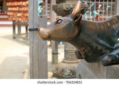 Dazaifu, Fukuoka, Japan - July 28,2017 : Cow metal statue, Students are believe come to rubbed makes pass an exam.