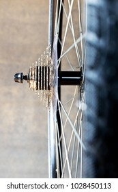 Ddetail of the rear wheel of new bicycle.