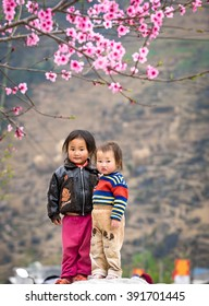 DDONG VAN, HA GIANG, VIETNAM, March 11th, 2016: the ethnic children was playing under Peach flower, the symbol of Vietnamese lunar new year.
