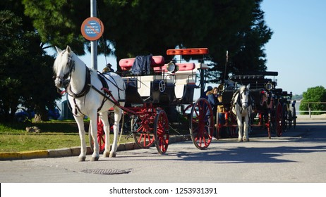 «Sanlucar de Barrameda, Cadiz/Spain»; 12 6 2018: Andalusian Horse Carriage Sanlucar de Barrameda Cadiz Spain»