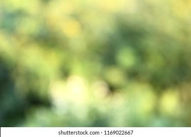 De focused blur background