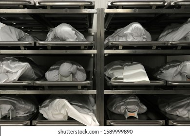 Dead Bodies Stored in Cool Room, Morgue, Mortuary, Fiona Stanley Hospital