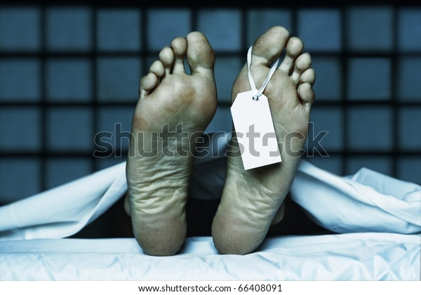 dead body with toe tag