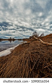 A dead branch lies on the shore by the river in the Northern Finland. The dramatic skies reflect on the river water.