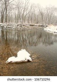 Dead deer in the Kishwaukee River demonstrates the harsh reality of a cold winter