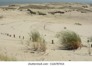 Dead dunes, Nida Lithuania, europe