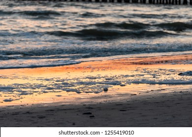 Dead fish, foam washed up red tide algae bloom toxic in Naples beach in Florida Gulf of Mexico during sunset on sand