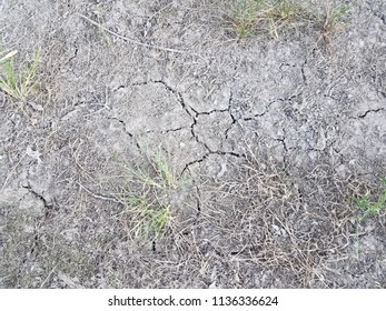 dead grass and dry dirt with cracks in it