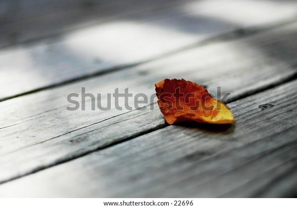 Dead leaf on porch.