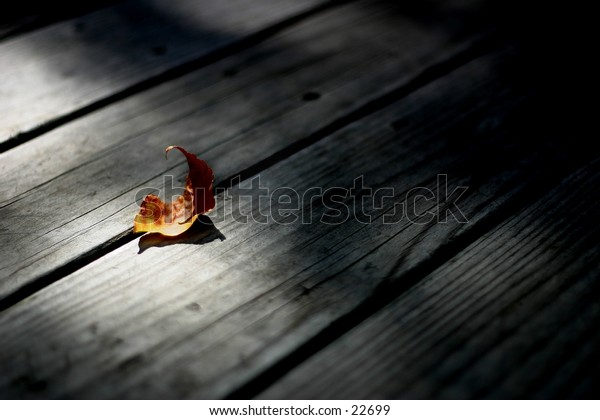 Dead leaf on porch.