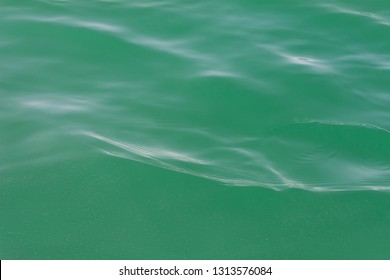 Dead Sea Green Water Ripples Background