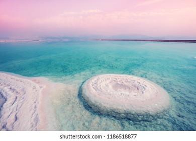 Dead sea salty shore. Wild nature. Tropical landscape. Summertime.