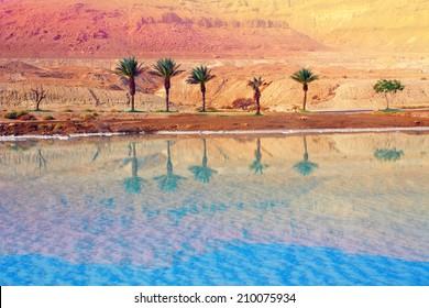 Dead sea shore, Israel