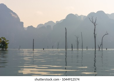 Dead standing trees as evidence of the preexisting forest in the Cheow Lan lake in the national Park Khao Sok