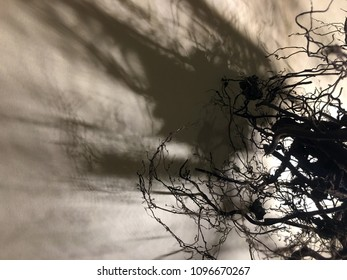 Dead tree isolated on gray background, dead tree in studio shots, desolate concept, roots tree in back, fallen roots, Dark night background