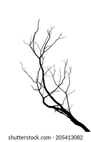 Dead tree silhouettes on white background