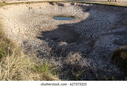 Dead tumbleweeds at drying ground watering hole/Dried Bushy Weeds in Deep Almost Dry Pond with Some Water Still Left/Dead tumbleweeds on dry cracked earth of disappearing watering place