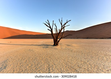 Dead Vlei in the southern part of the Namib Desert, in the Namib-Naukluft National Park of Namibia.