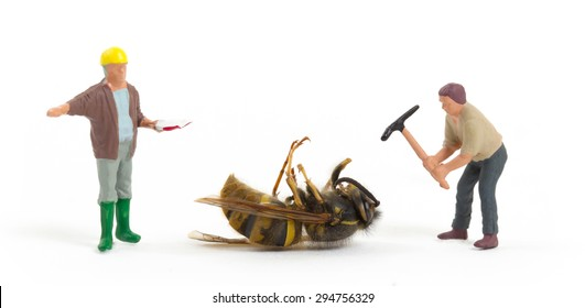 Dead wasp with miniature figurines, isolated on white