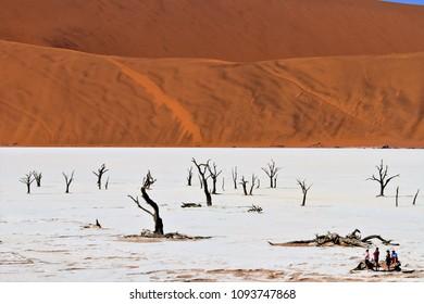 Deadvlei, Namibia. Natural landscape of the Namib desert.