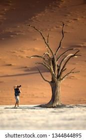 Deadvlei, Sossusvlei, Naukluft National Park, Namibia / July 24, 2017 : Numbers of tourists have been increasing in Deadvlei over the years, causing damage to the 800 year old trees.