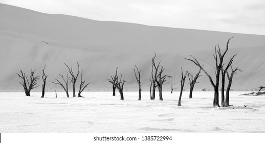 "Deadvlei is a white clay pan located near the more famous salt pan of Sossusvlei, inside the Namib-Naukluft Park in Namibia. Also written DeadVlei or Dead Vlei, its name means ""dead marsh"""