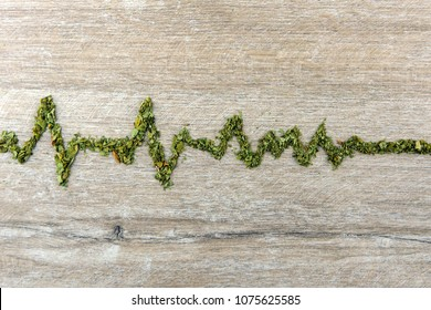 death, coma: cardiogram built of marijuana on a woody background, increased contrast