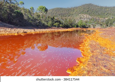 Death and desolation in the Tinto River, Huelva, Spain. Tinto River is notable for being very acidic and its deep reddish hue is due to iron and copper dissolved in the water.