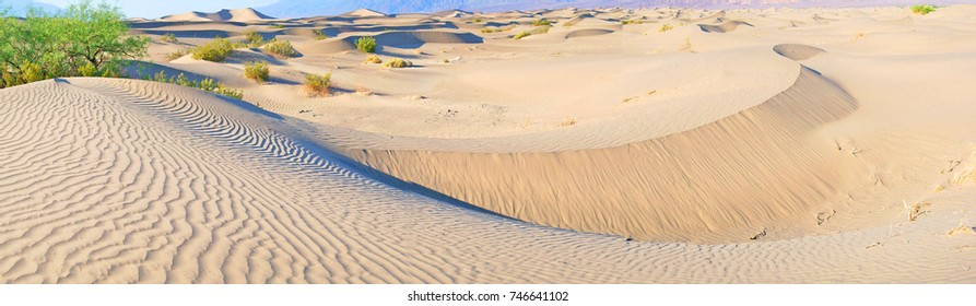 Death Valley Sand Dunes --  The wind and shifting sands form beautiful lines and textures